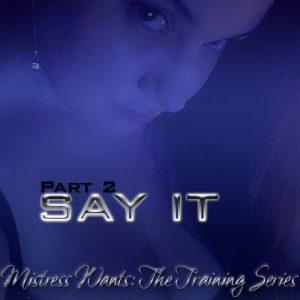 Say It