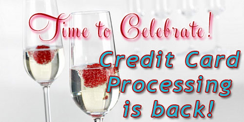 Credit Card Processing is back!